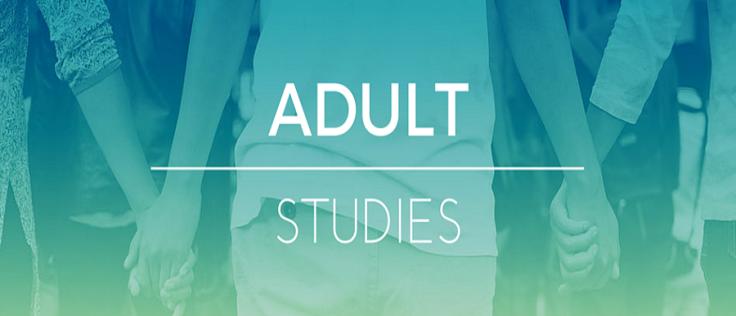 banner-adult-studies