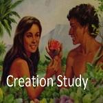 creation-study-button