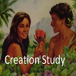 creation-study-button